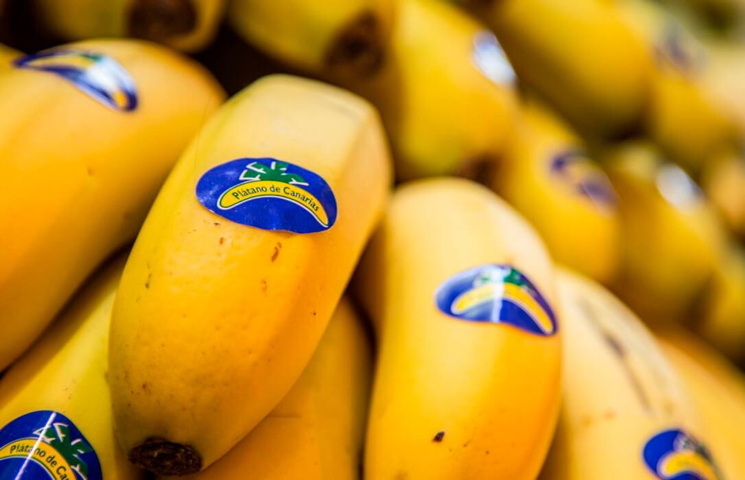 El Plátano de Canarias logra salvar al menos durante dos años sus fondos, que se mantendrán hasta 2022