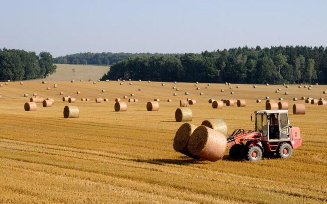 Batería de propuestas a los presupuestos de Agricultura para 2021 para que el MAPA deje de ser el «pato más feo»