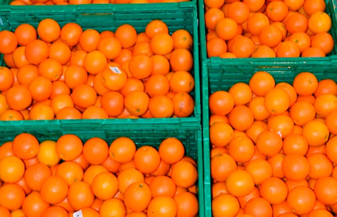 Satisfacción ante la rectificación de Consumo de subir el IVA al zumo de naranja ante las críticas del sector