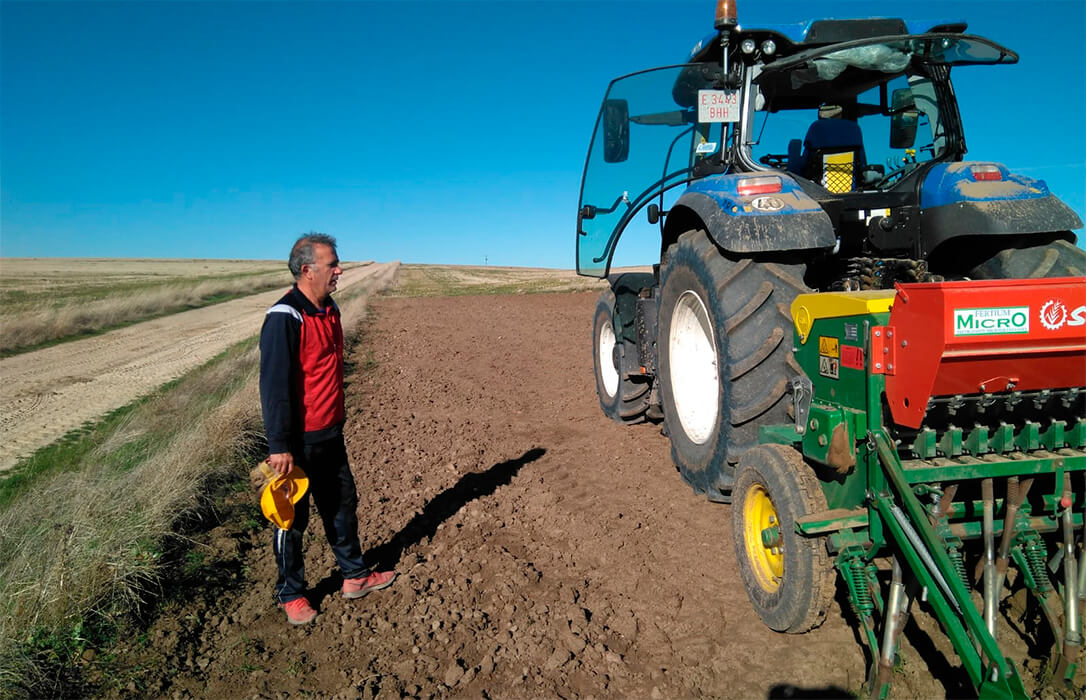 Campos demostrativos de cereal dentro de la iniciativa 'Grano Sostenible' para mostar qué semilla utilizar en cada terreno