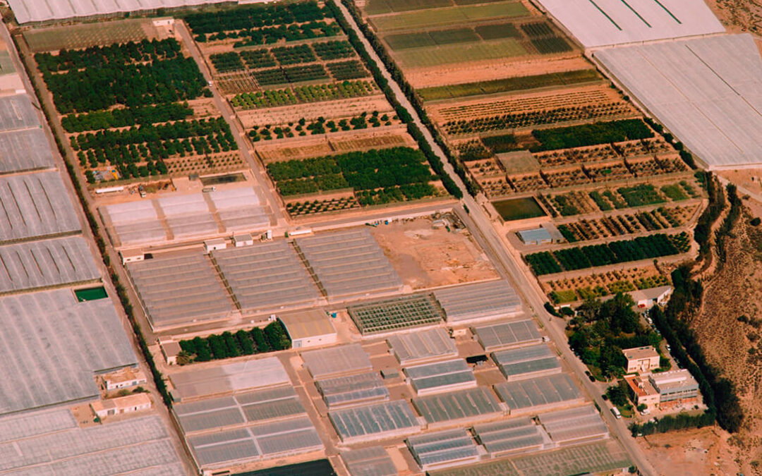 Cajamar promueve un nuevo proyecto fotovoltaico en su centro experimental de Almería