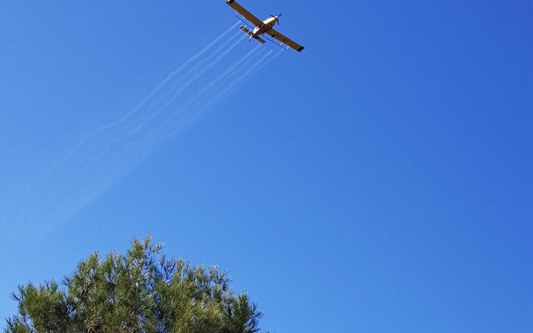 Andalucía finaliza la campaña de control de procesionaria del pino con medios aéreos