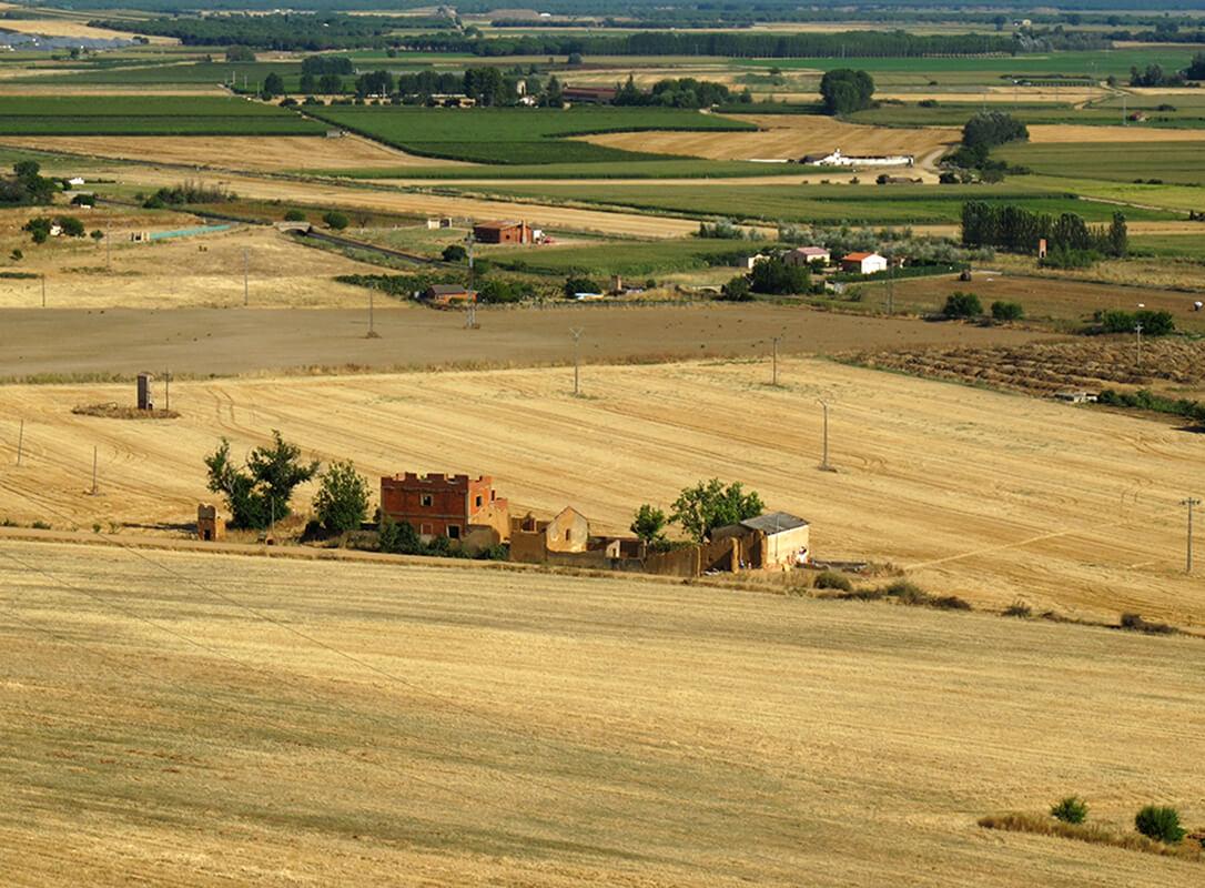 Alertan de la pérdida de un tercio del número de agricultores mientras se desploma otro tanto el peso agrícola en el presupuesto de CyL