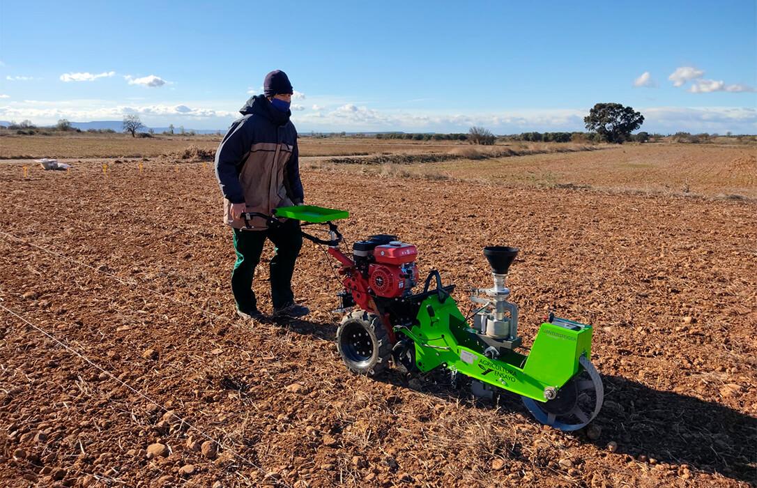 Red Arax presenta las primeras conclusiones sobre el cultivo del garbanzo en extensivo en Aragón con 1.240 kilos por hectárea