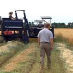 Debate de la PAC: «Estamos de acuerdo en que dos agricultores que hagan más o menos lo mismo, tienen que cobrar las mismas ayudas» 1