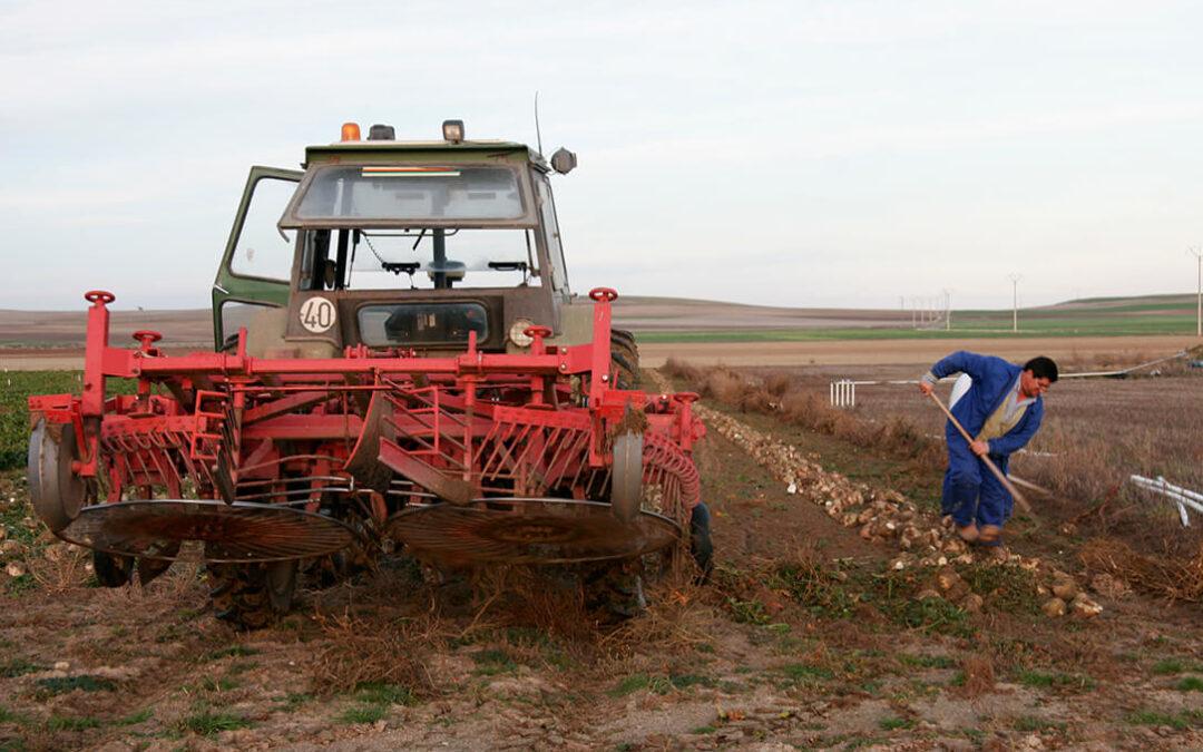 El peso y la figura del agricultor genuino dentro de la nueva PAC centrará un debate con muchas dudas del Plan Estratégico Nacional
