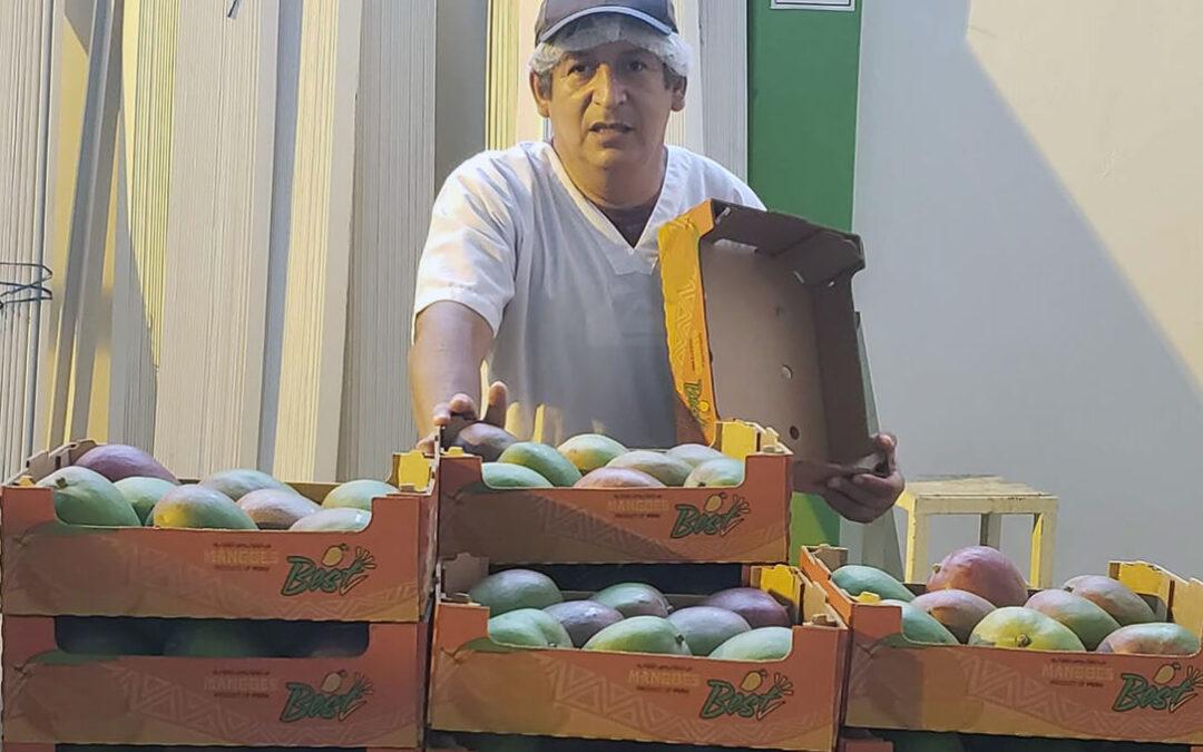 El mango de Perú apuesta por ordenar más su oferta y crear una marca de calidad con la vista puesta en EEUU