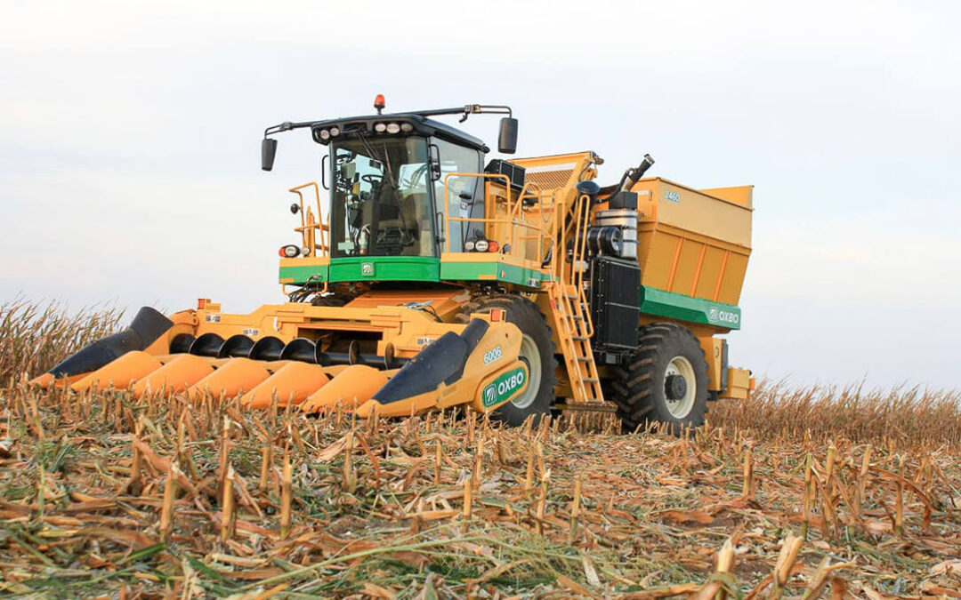 Las cosechadoras aceleran su trabajo en la recolección del maíz ante el temor de un frente lluvioso en León