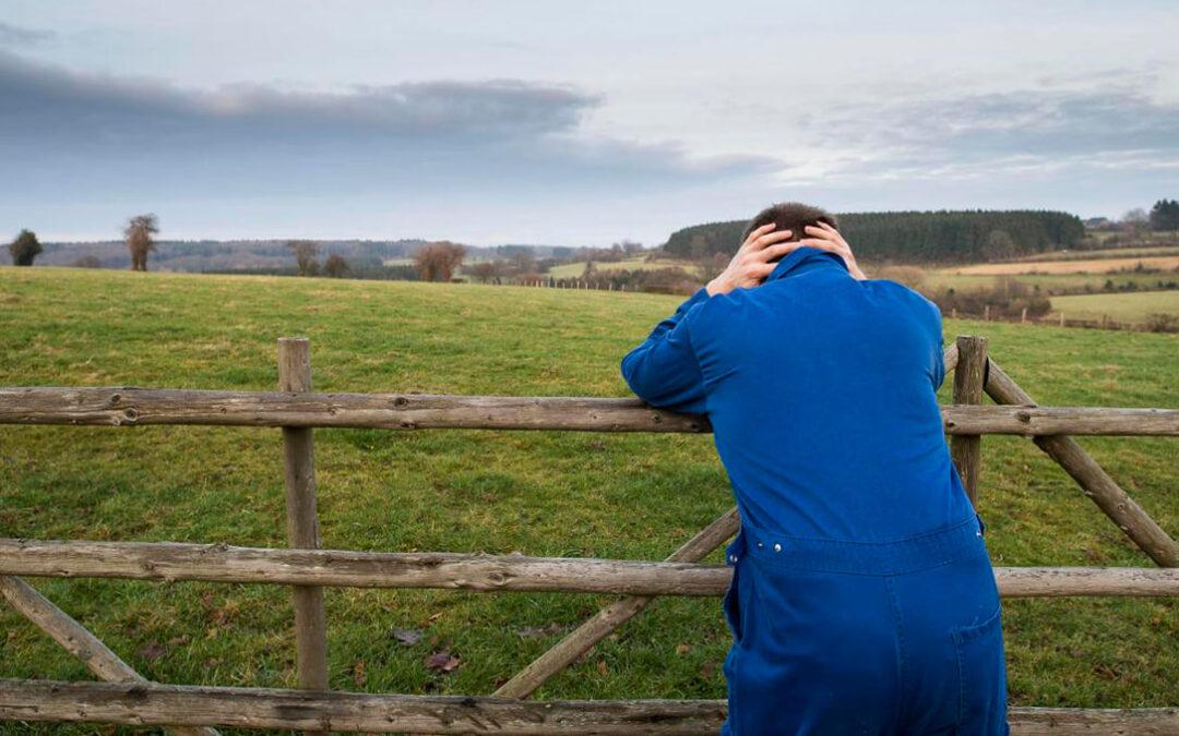Venta a pérdidas, soledad, exigencias,… el suicidio de agricultores y ganaderos franceses hace reaccionar al Gobierno galo