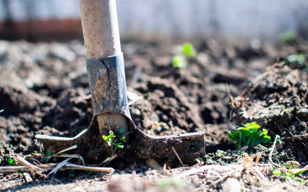 Por otra PAC insta a Gobierno y CCAA a cerrar un Plan Estratégico que realmente impulse una transición agroecológica