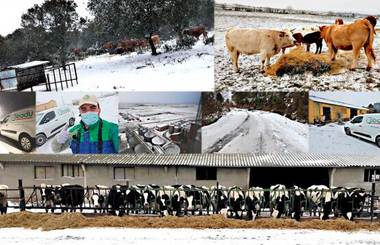 Cobadu y AENOR firman un acuerdo para impulsar el compromiso con el Bienestar Animal en las granjas de sus más de 10.500 socios
