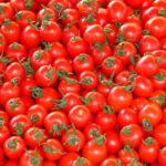 La industria intenta cerrar contratos de tomate «muy por debajo» de su precio: Piden no firmar por debajo de 90 euros/Tm