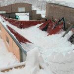 Planas cifra entre 60 y 80 millones los daños en la agricultura y ganadería por el temporal en una primera estimación «muy provisional»
