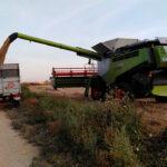 Rectificación a un dato erróneo: La cebada no pierde el 50% de su cotización sino que subió 8 euros la semana pasada 1