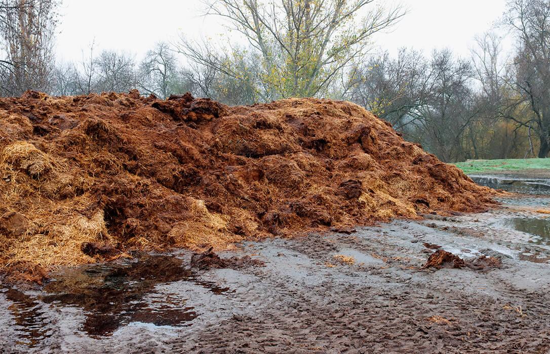 Debate sobre el decreto de nutrición de suelos: «Debemos perseguir la máxima sostenibilidad, pero sin dejar a nadie atrás»
