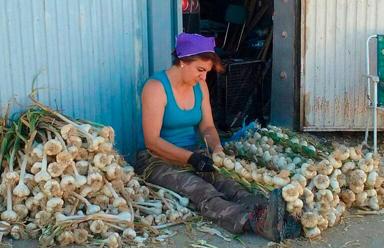 Denuncian que las explotaciones de titularidad femenina tienen más difícil acceder a las ayudas agrarias