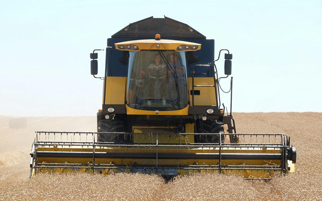 Sigue la fuerte tendencia alcista en los cereales y la duda es dónde está el techo tras marcar máximos de los últimos 7 años
