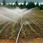 Cajamar Innova lanza una convocatoria para incorporar a su incubadora proyectos innovadores en gestión del agua 1