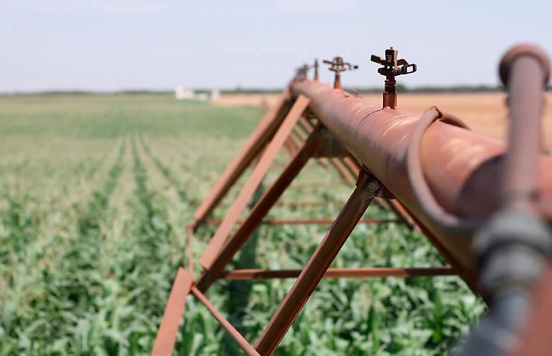 Clara advertencia de la ONU: El mercado de los futuros del agua en Bolsa es especulación y puede perjudicar a los pequeños regantes