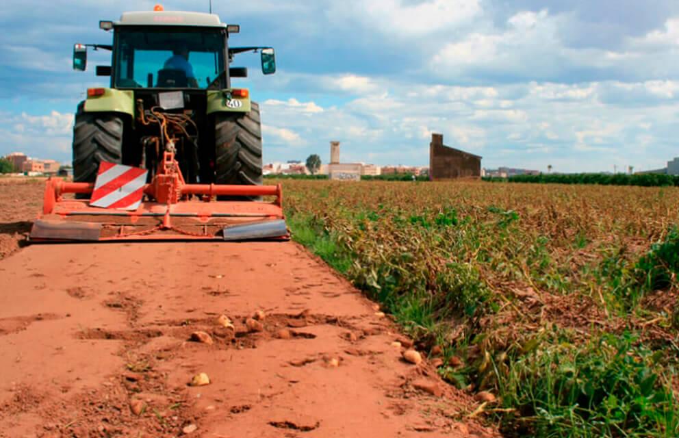 Periodo transitorio PAC: «Aceleramos la convergencia entre agricultores porque lo pide Europa, pero se hará de forma gradual»