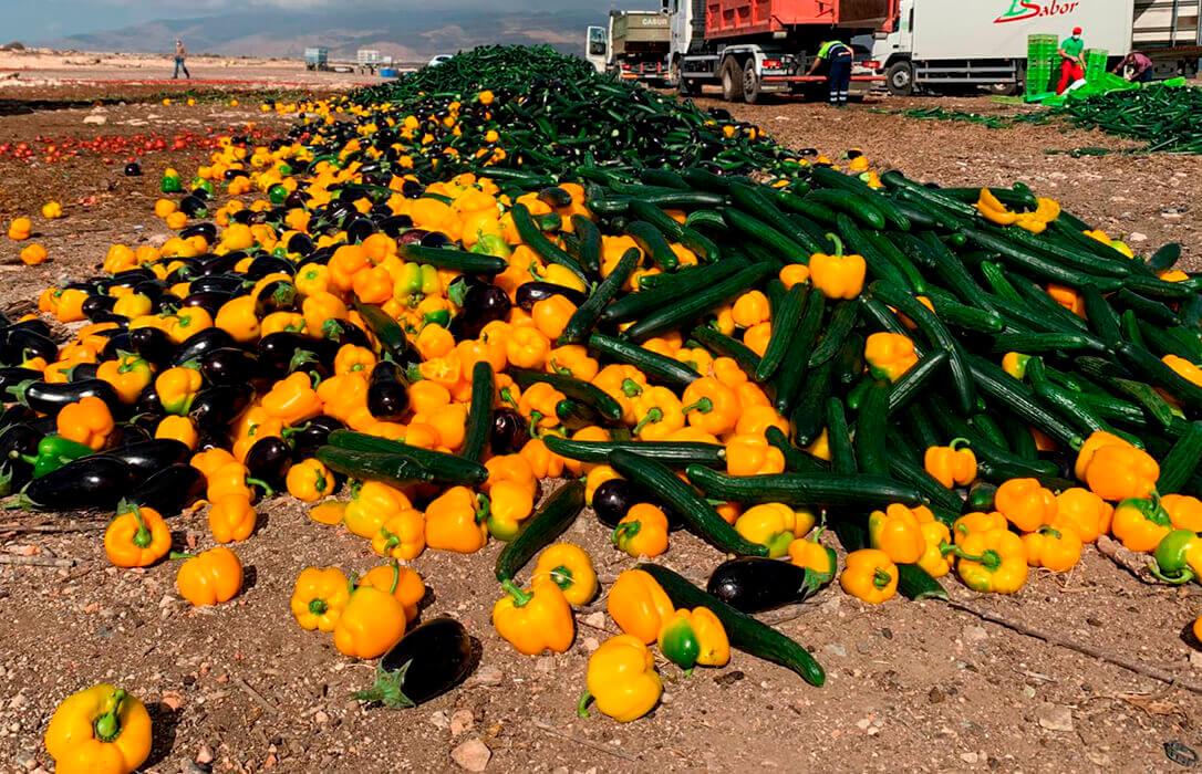 Vender por debajo de coste: Del movimiento que unió a todo el campo a la división de todo sector el agroalimentario español