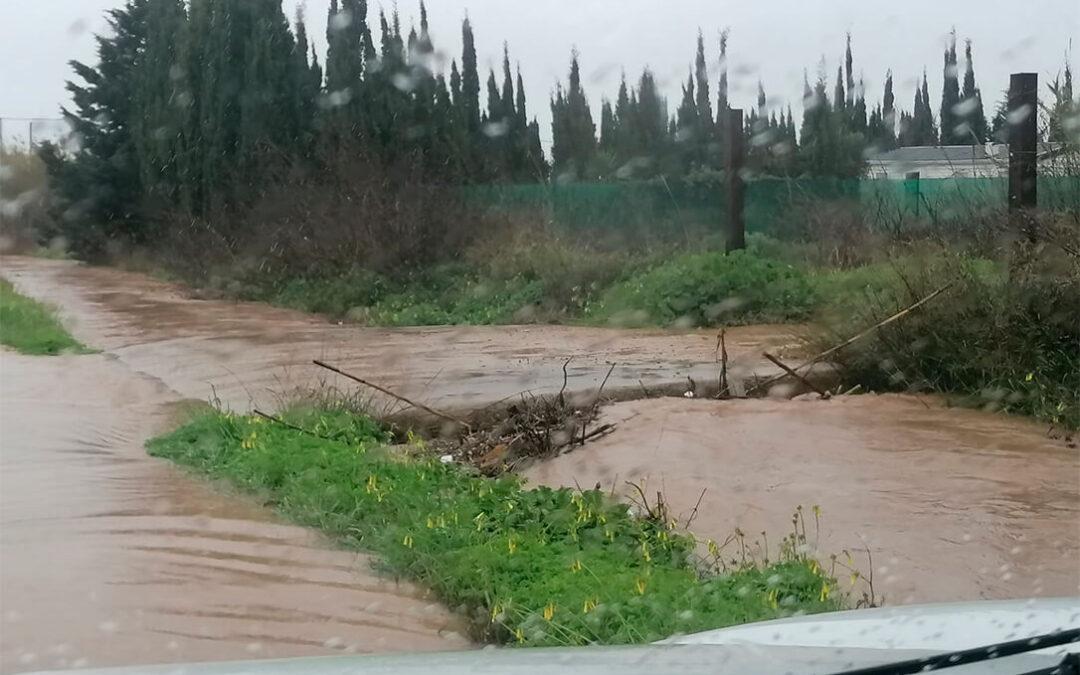 Sabor agridulce de 'Filomena' en Cádiz: Deja agua muy necesaria para el campo,  pero inunda los cultivos de Chipiona