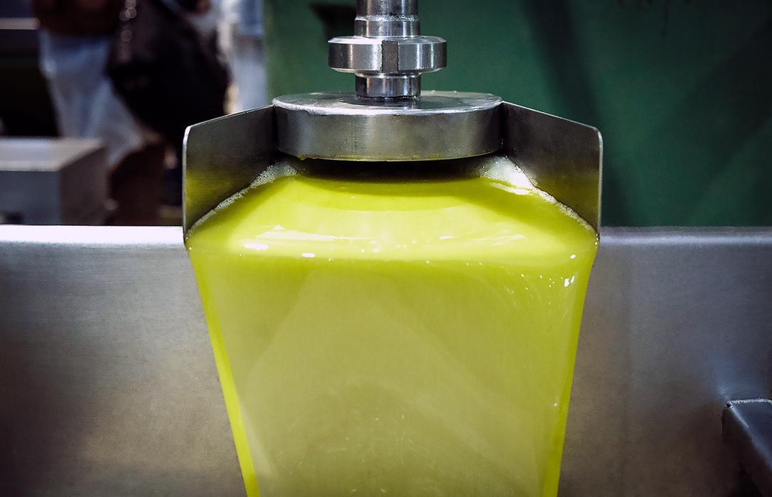 Cooperativas desvela lo que todos sabían: Han vendido aceite por debajo de su coste por una norma «incumplible»