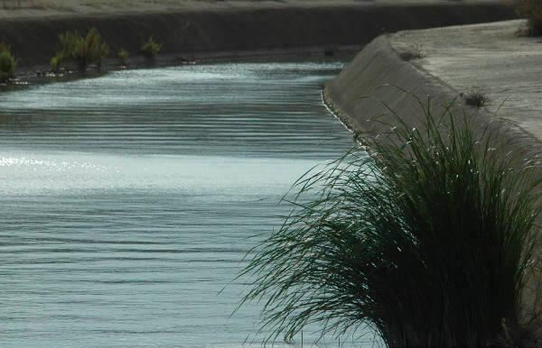 La llegada de un 40% más de agua por el deshielo en el Tajo por Filomena y las borrascas 'blinda' el trasvase