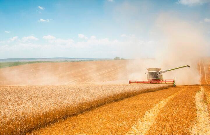 ¿Hablamos de formación?: La AETC lanza su Plan de Formación para el sector cerealista