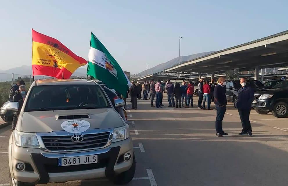 Los olivareros de Jaén se suman a las protestas por la situación del sector, los autónomos y el transporte