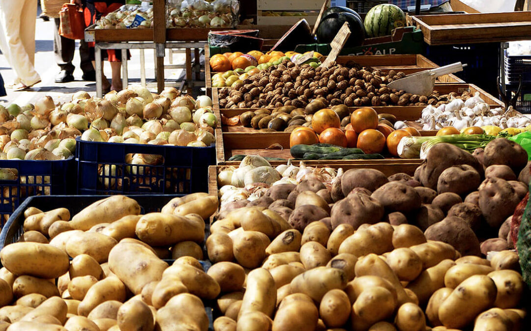 Ley de Cadena Alimentaria: El avance necesario para un reparto equitativo del valor