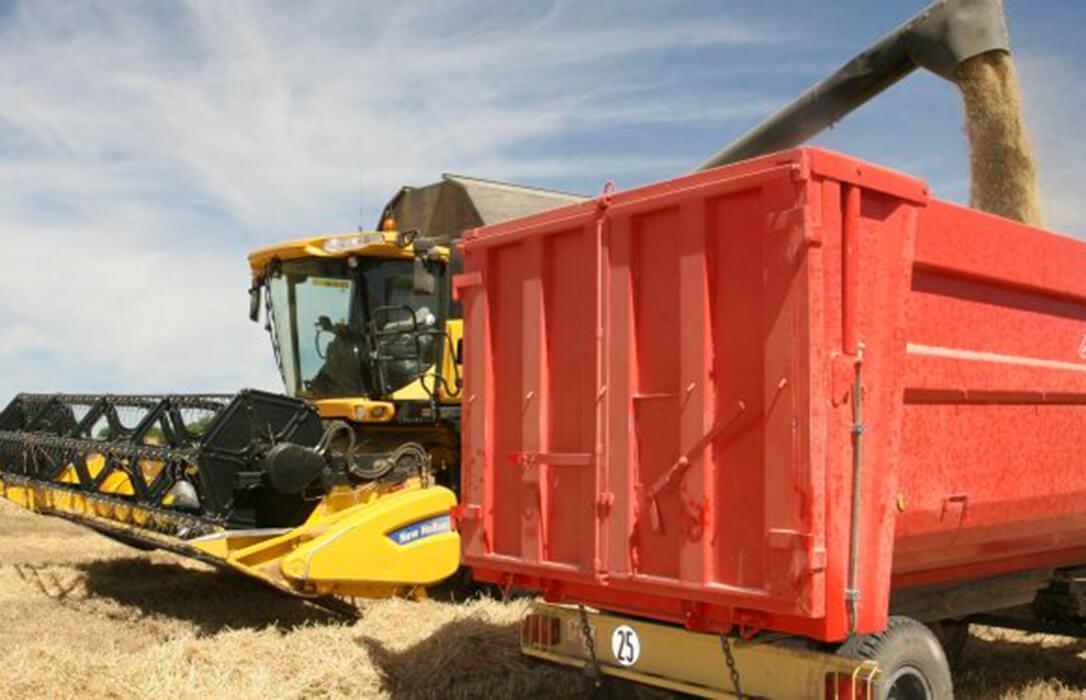 ¿Seguirán subiendo los precios de los cereales? China tiene la palabra en un mercado demasiado cambiante