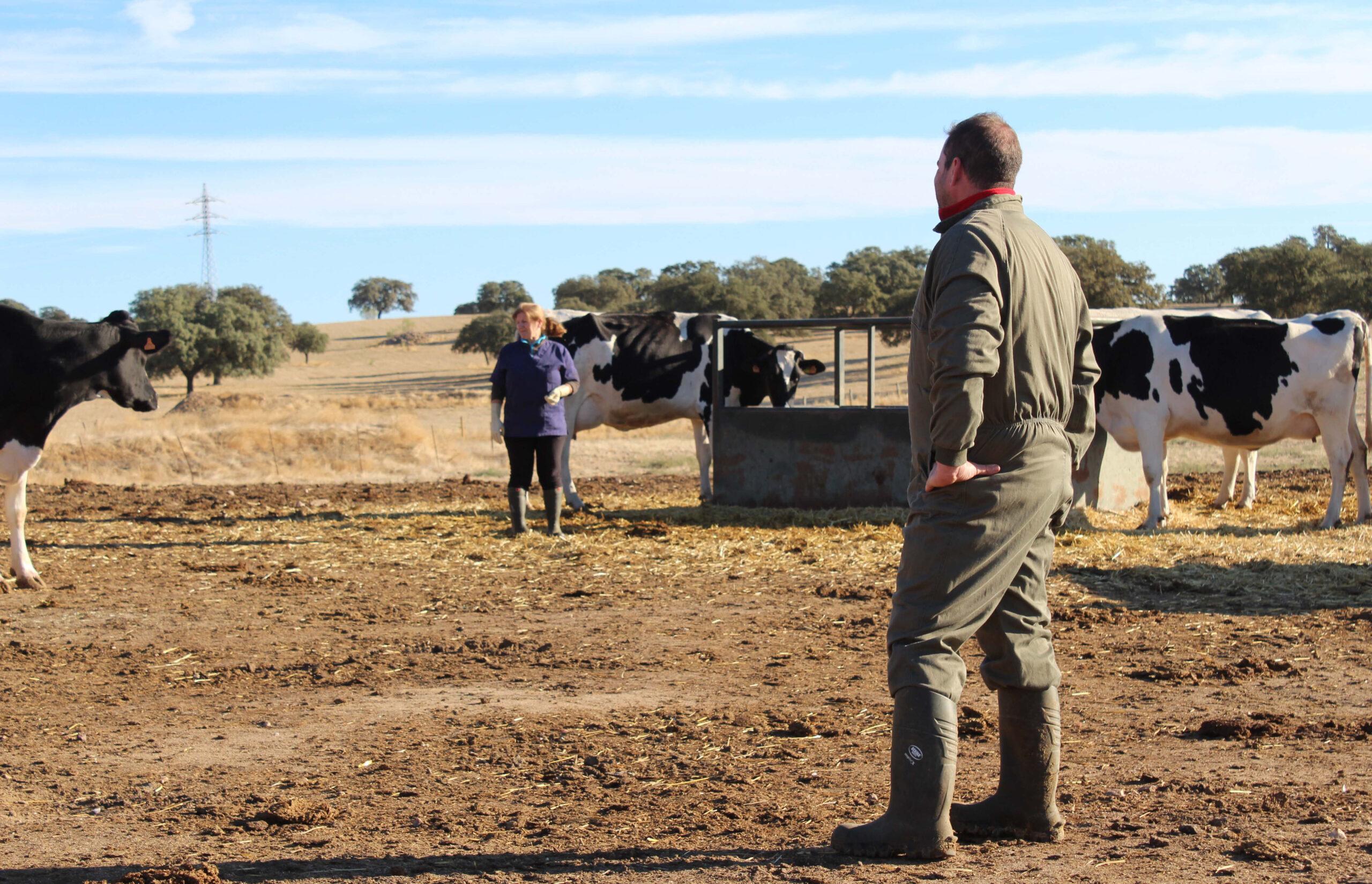 Las cooperativas agroalimentarias, el valor más seguro en Andalucía