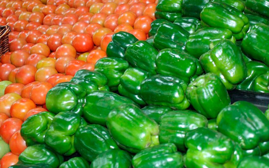 Más a repartir: Planas reitera que planteará la inclusión del sector de frutas y hortalizas en los pagos directos de la PAC