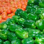 Más a repartir: Planas reitera que planteará la inclusión del sector de frutas y hortalizas en los pagos directos de la PAC 1
