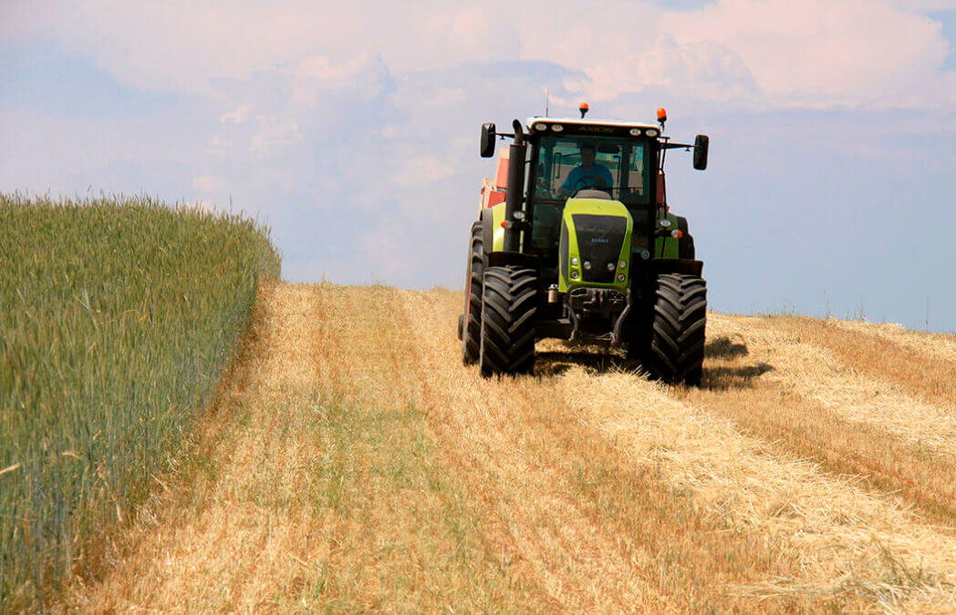 Planas insiste en alcanzar un pacto de Estado sobre la PAC «que beneficie a la inmensa clase media de la agricultura española»