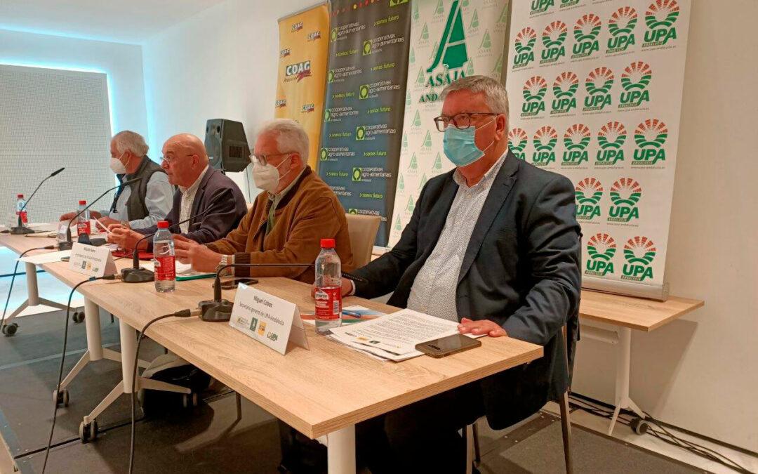 Reforma de la PAC: El sector agrario andaluz muestra su unidad y le deja claro a Planas que solo le queda diálogo o dimisión