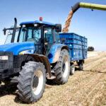 Los mercados mayoristas del cereal no apuestan por cambios en las cotizaciones y mantienen un tónica de tranquilidad en los precios 1