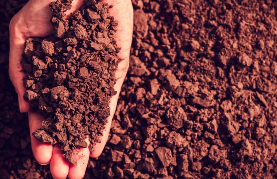 Investigan qué usos agrícolas del suelo ayudan a mitigar mejor el cambio climático