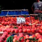 Si la CE no hace nada: Respaldo al consejero murciano para que abra negociaciones para volver abrir el mercado ruso a frutas y hortalizas 1