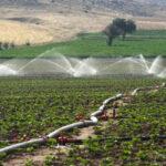 Agua y Medio Ambiente 1