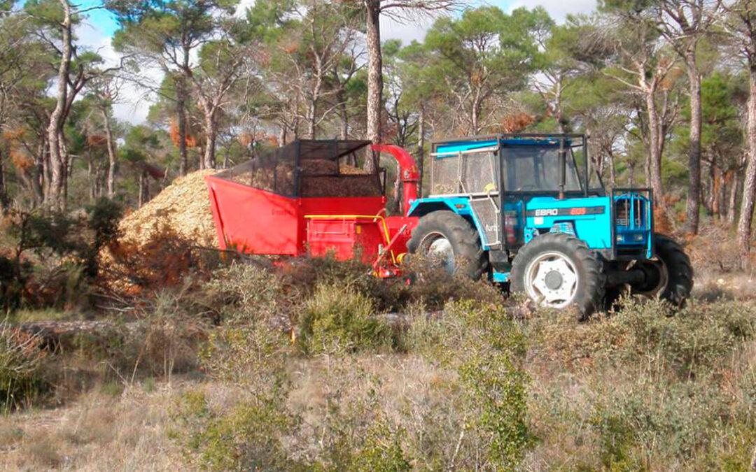 Las ayudas forestales andaluzas se quedan en el olvido y el sector lamenta que haya 107 millones de euros sin poder ejecutarse