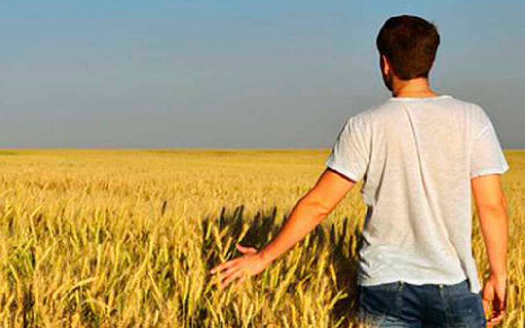 Aprobadas ayudas de hasta 70.000 euros a jóvenes agricultores para contratación, invernaderos o granjas de ganadería