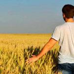 Aprobadas ayudas de hasta 70.000 euros a jóvenes agricultores para contratación, invernaderos o granjas de ganadería 1