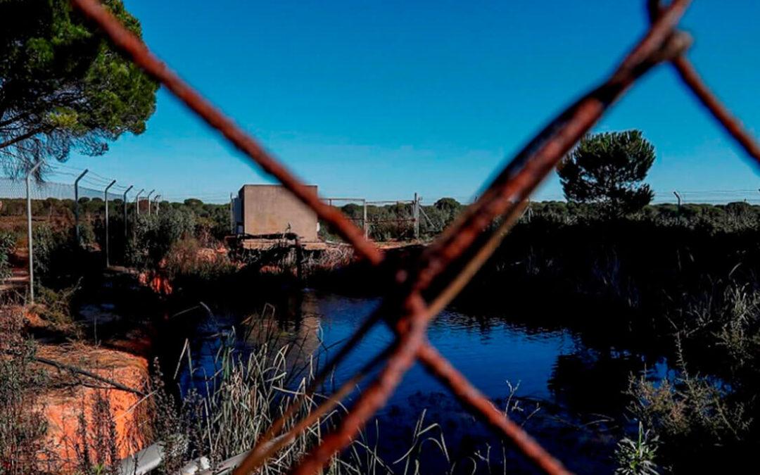 Agricultores del entorno Doñana se alían frente a la denegación del registro de pozos por CH Guadalquivir