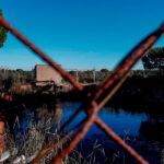 Agricultores del entorno Doñana se alían frente a la denegación del registro de pozos por CH Guadalquivir 1