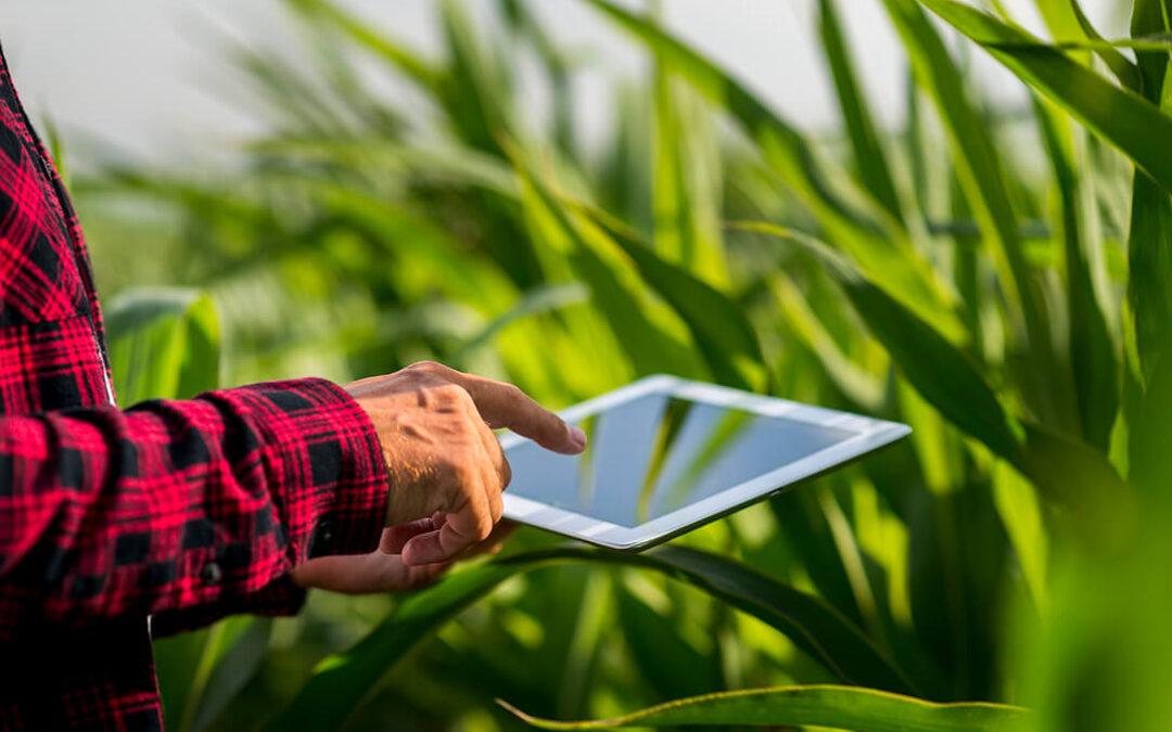 La digitalización como un eje trasversal y necesario para la recuperación agraria tras la pandemia de la covid