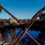 La Fiscalía pide penas de casi 4 años cárcel a 15 acusados, incuidos dos alcaldes, por extracción ilegal de aguas en Doñana 1