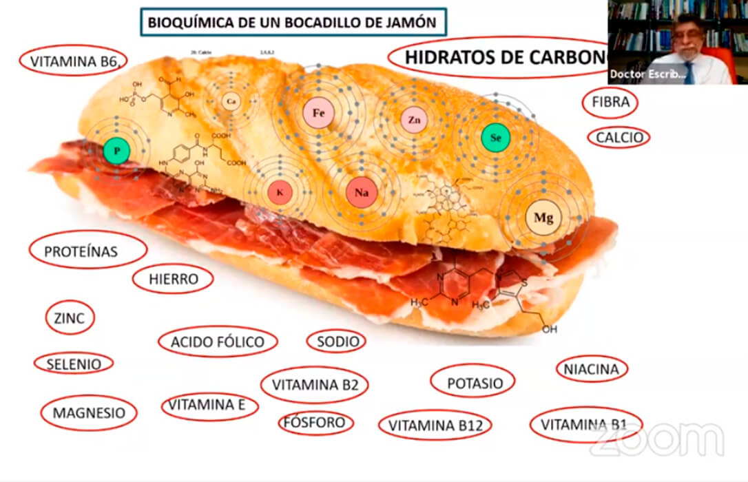 Expertos y profesionales apuestan por reactivar el consumo de pan entre los menores de 35 años en base a argumentos nutricionales