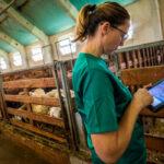 Debate sobre el reto medioambiental y la digitalización y el papel que pueden jugar los veterinarios con la innovación 1